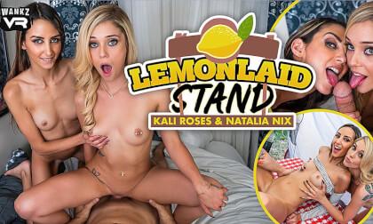 LemonLaid Stand - Teen MFF Threesome HD POV VR