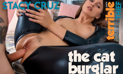 The Cat Burglar - Big Tits Babe in a Catsuit Fucks