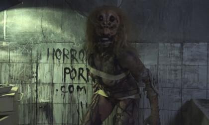 Female Spider - Horror Porn VR