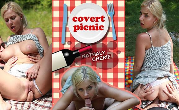 Covert Picnic - Busty Blonde Public Sex
