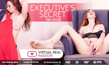 Executive's Secret - Redhead Office Toying