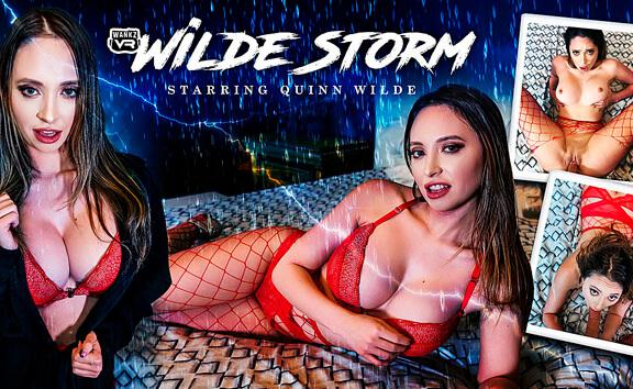 Wilde Storm